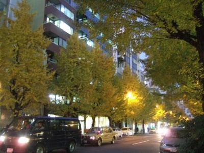 20071207いちょう並木