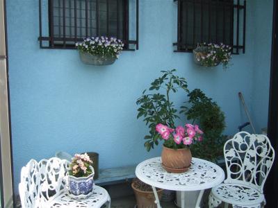 20110520アトリエの庭