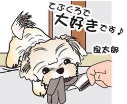 __tn_tebukuro.jpg