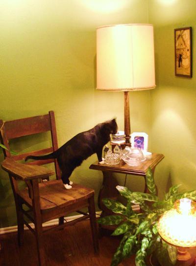 Sho' Lamp Table.jpg