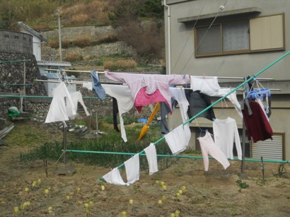 3325洗濯物.JPG