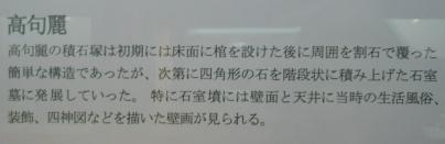 1021高句麗墓説明.JPG