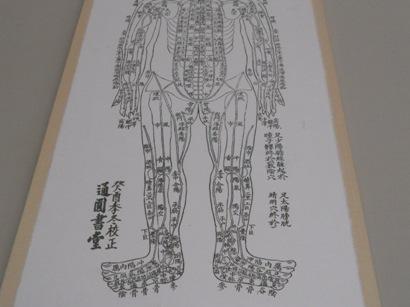1888鍼の教科書.JPG