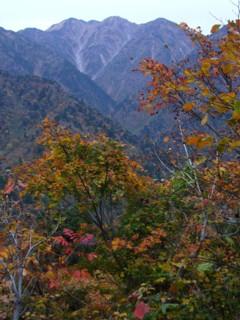 黄葉と毛勝山