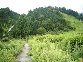 夏の粟巣野ゲレンデ