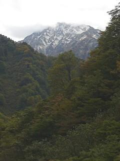 新雪(毛勝山西北尾根)