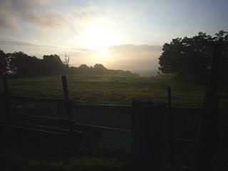 牧場の夜明け