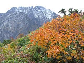 黄葉と冠雪の剱岳