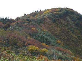 僧ヶ岳山頂直下