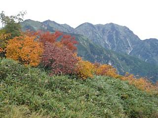 紅葉と毛勝山