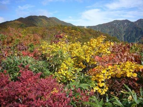 成谷山から僧ヶ岳