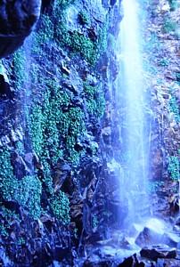 シュルンドに落ち込む滝の流れ