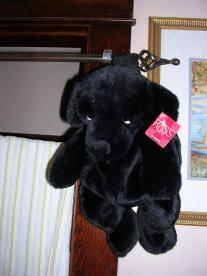 キッチナー 2006年 0110011.jpg