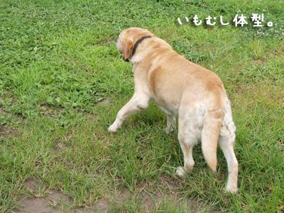 ちょも無視.jpg