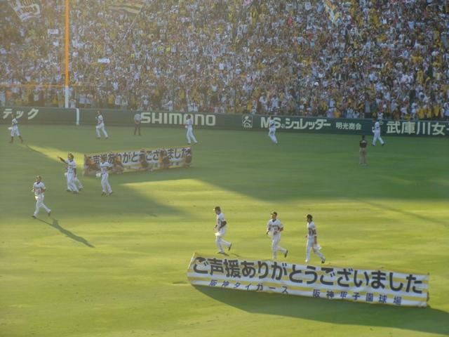 甲子園 阪神vs中日