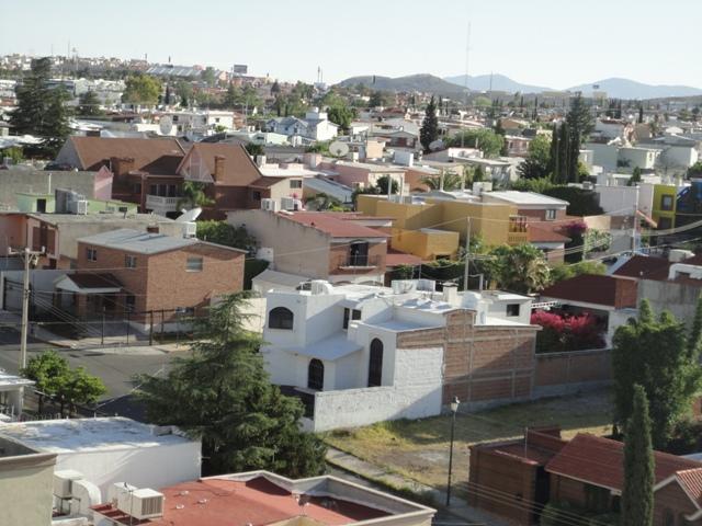 チワワ メキシコ