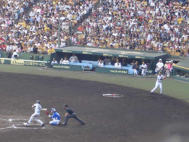 甲子園 阪神vs横浜