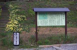 舘山(1)