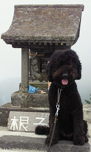 根子岳登頂