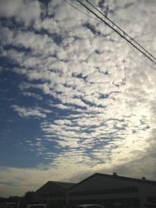 うろこ雲2.jpg
