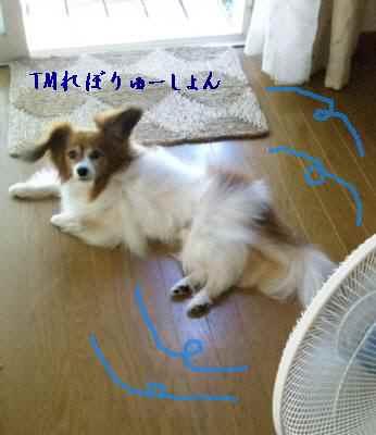 扇風機の前で・・・。TMさん風.jpg