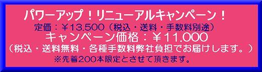 newkyanpen1.jpg