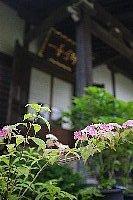 光即寺IMG_1517.JPG