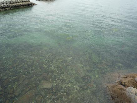 waikiki beach 005.jpg