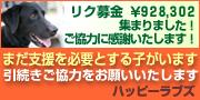 riku_bana1.jpg