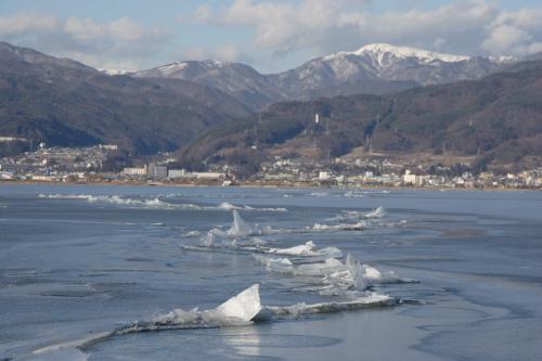 2季ぶりの諏訪湖の御神渡り(おみわたり)   バラの庭 - 楽天ブログ