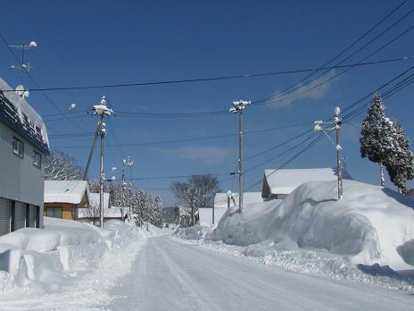 671)岩手散歩 県道1号冬景色(西...