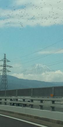 道中2富士山-20101120.JPG
