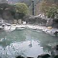 十津川荘露天 (2).jpg