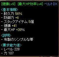 健康HPベルトDX.JPG