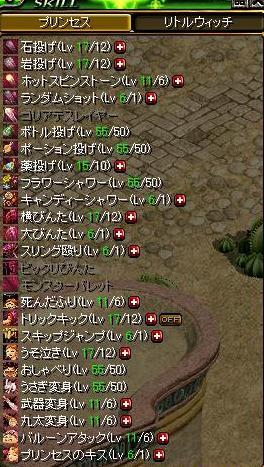 姫スキル2.JPG