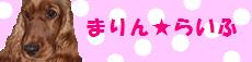まりんバナー.png