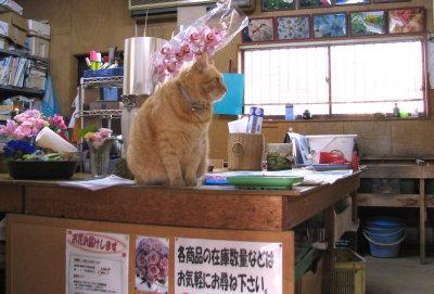 花の駅(まねき猫).jpg