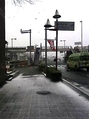 岡崎市雪景色