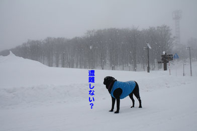 tazawa6.JPG