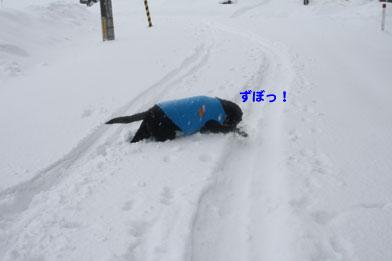 tazawa7.JPG