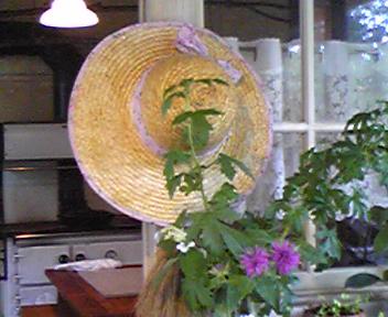 090726西の魔女帽子.jpg
