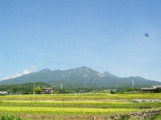 cocoの山