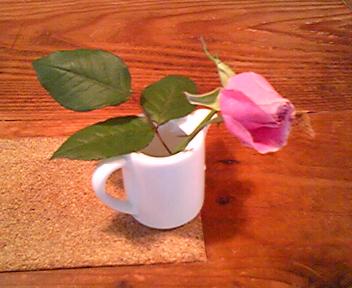 090725ピンク薔薇2.jpg