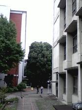 慶応三田キャンパス.jpg