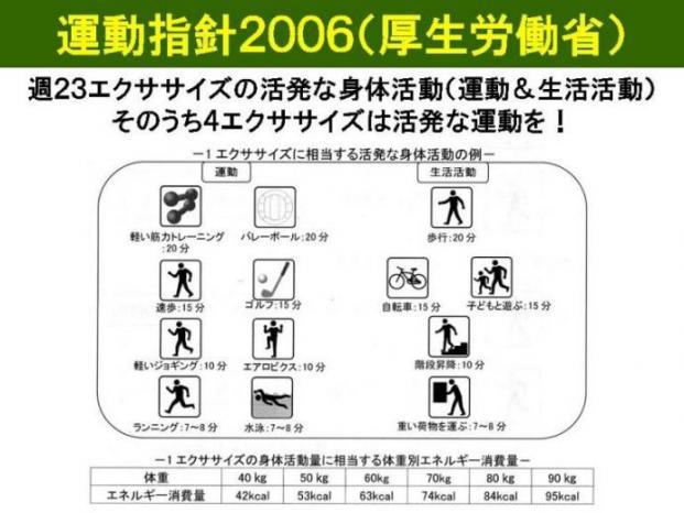 運動指針2006.jpg