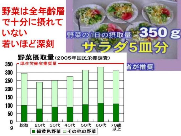 野菜摂取量2.jpg