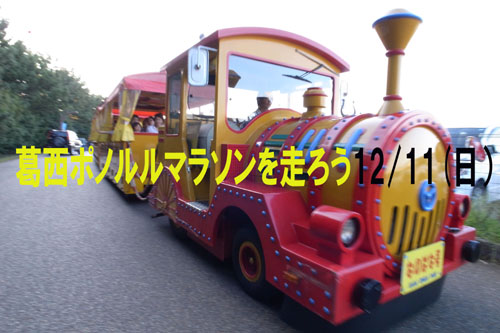 R0011268.jpgのコピー.jpg