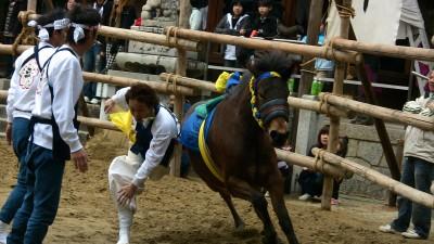 馬駆け2009