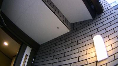 玄関に蜂の巣
