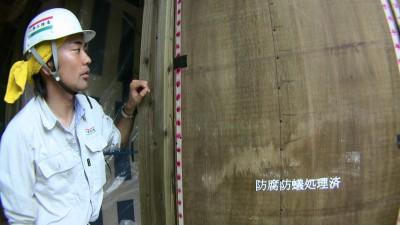 防腐防蟻処理済の構造用合板